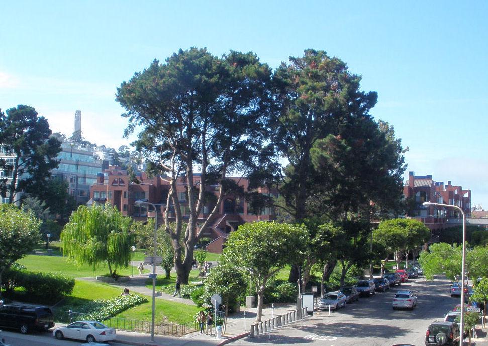 Sydney G. Walton Square